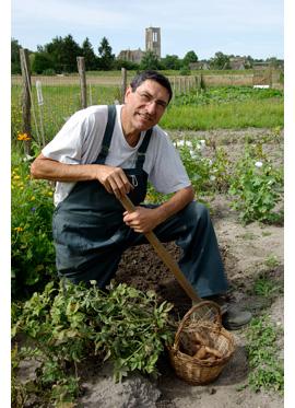 Trucs et astuces du jardinier le plant fran ais de pomme for 1001 trucs et astuces pour le jardin