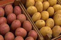 Belle pommes de terre