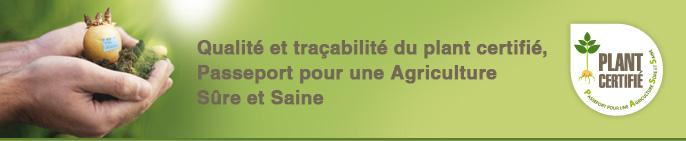 Qualité et traçabilité du plant certifié, Passeport pour une agriculture Sûre et Saine